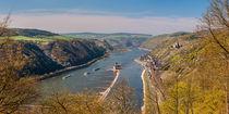 Mittelrhein bei Kaub (1neu) von Erhard Hess