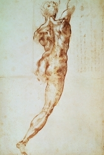 Nude, study for the Battle of Cascina by Buonarroti Michelangelo