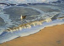 Seagull at the Beach von Oliver  Kohls