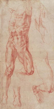 W.13r Study of a male nude, stretching upwards by Buonarroti Michelangelo