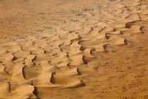Namibian Desert by Matilde Simas