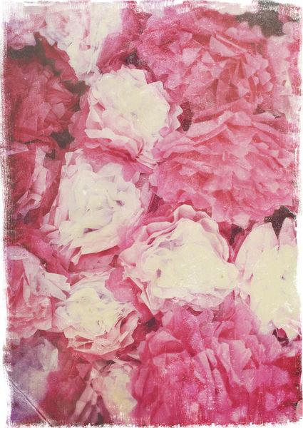 Paperflowers-c-sybillesterk