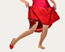 Der Tanzschuh  von Barbara  Keichel