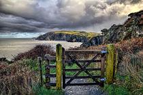 Sandy Cove, Lee Bay, North Devon von Dave Wilkinson
