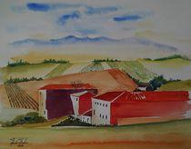 Weingut im Languedoc by Theodor Fischer