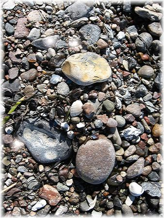 P-beast1-pebbles-at-the-beach1-copy