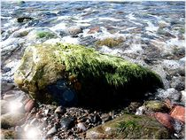 Mossy Stone in the Surf by Sabine Cox