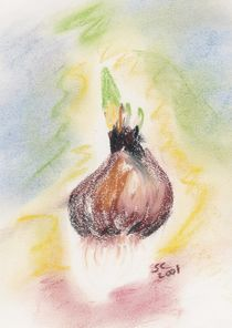 Oil Pastel - Hyacinth Bulb by Sabine Cox