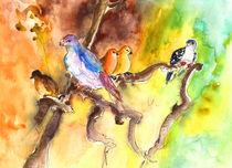 Birds in Gran Canaria 01 by Miki de Goodaboom