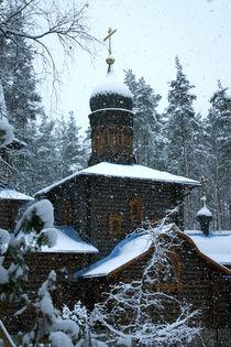 Winter Tale von Vasilissa Valdes