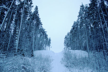 Karelia11
