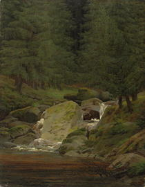 The Evergreens by the Waterfall  by Caspar David Friedrich