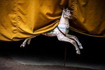 Paris carousel horse by Peter Coles