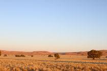 Wüste im Morgenlicht von Andrea  Hergersberg