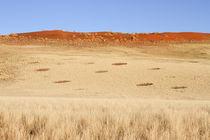 Feenkreise Namib  von Andrea  Hergersberg