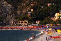 Cinque Terre: ein Strand von andreas gimmler