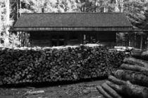 Holzfällerhütte, schwarz weiss Fotografie von Kathleen Follert