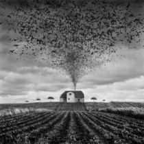 Premonition by Dariusz Klimczak