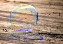 Große Seifenblasen schwebend - Giant Bubbles gliding 40 by Eddie Scott