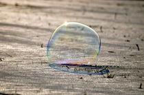 Große Seifenblasen schwebend - Giant Bubbles gliding 50 by Eddie Scott