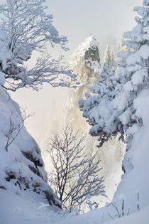 Bayern im Winter von Björn Kindler