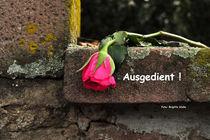 Rose, ausgedient ! von Brigitte Stolle