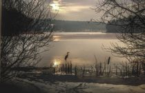 Grunewaldsee im Winter von Shiva B.