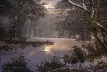 Winterromance von Shiva B.