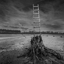 Ambition by Dariusz Klimczak