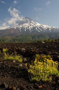 Llaima volcano III von Víctor Suárez