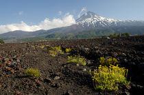 Llaima volcano II von Víctor Suárez