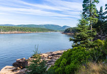 Scenic Cove At Acadia National Park by John Bailey