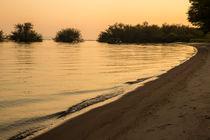 Sonnenaufgang am Lake Victoria von Andrea  Hergersberg