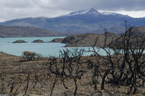 Pehoé lake, mountains and burnt ground von Víctor Suárez