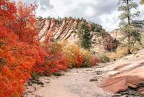 Colorful Gorge von John Bailey
