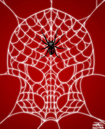Skull web by Roberth Fearon