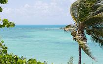 Bahia Honda State Park Atlantic View by John Bailey