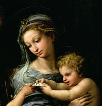 The Virgin of the Rose von Raffaello Sanzio of Urbino