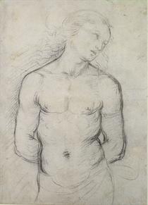 Der heilige Sebastian von Raffaello Sanzio of Urbino