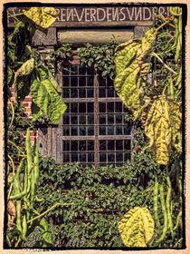 Fenster zum Garten von Uwe Karmrodt