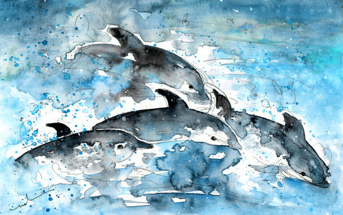 Dolphins-in-gran-canaria-m