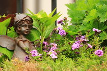 Flower-bed mit an angel statue by amineah