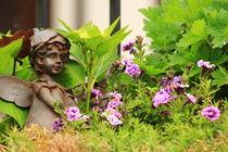 Flower-bed mit an angel statue von amineah