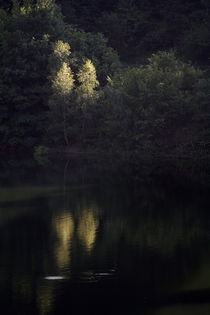 beleuchtet by Gerhard Jörgens