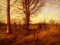 The Homestead Farm Track. by Heather Goodwin