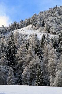 winterlich von Jens Berger