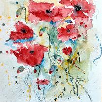 Poppies04