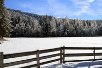 Schnee by Jens Berger