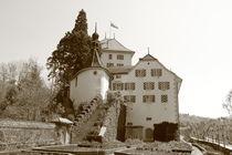 Schloss Wildegg, Castle von amineah