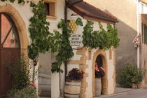 Winery by amineah